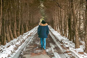 detox your life with a walk in the woods